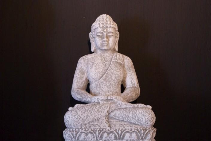 Plant Buddha